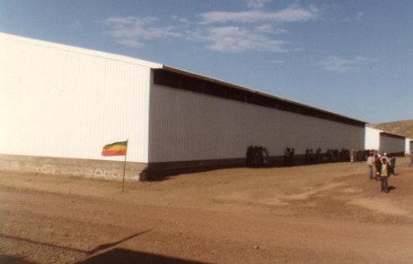 Ethiopian Grain Store Project